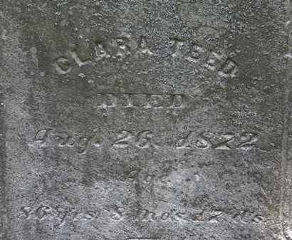 TEED, CLARA - Lorain County, Ohio | CLARA TEED - Ohio Gravestone Photos