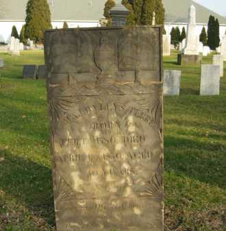 TERREL, MAJ. WYLLYS - Lorain County, Ohio | MAJ. WYLLYS TERREL - Ohio Gravestone Photos