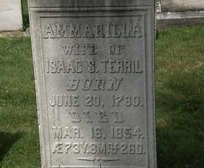 TERRIL, AMMARILLA - Lorain County, Ohio | AMMARILLA TERRIL - Ohio Gravestone Photos