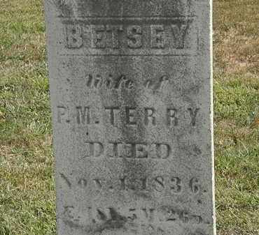 TERRY, BETSEY - Lorain County, Ohio | BETSEY TERRY - Ohio Gravestone Photos