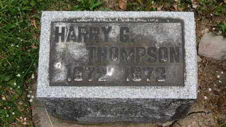 THOMPSON, HARRY G. - Lorain County, Ohio | HARRY G. THOMPSON - Ohio Gravestone Photos