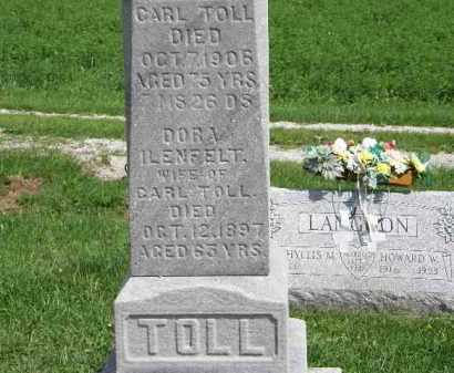 TOLL, DORA - Lorain County, Ohio | DORA TOLL - Ohio Gravestone Photos