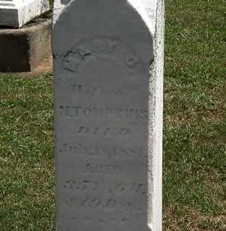 TOMPKINS, MARY - Lorain County, Ohio | MARY TOMPKINS - Ohio Gravestone Photos