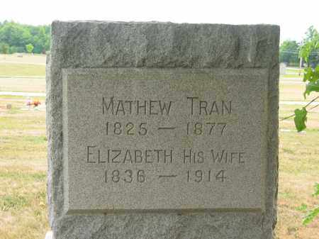 TRAN, MATHEW - Lorain County, Ohio | MATHEW TRAN - Ohio Gravestone Photos