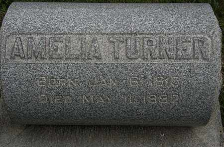 TURNER, AMELIA - Lorain County, Ohio | AMELIA TURNER - Ohio Gravestone Photos