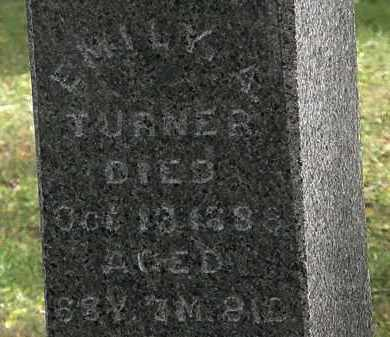 TURNER, EMILY A. - Lorain County, Ohio | EMILY A. TURNER - Ohio Gravestone Photos