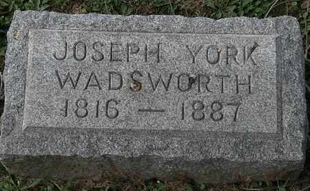 WADSWORTH, JOSEPH YORK - Lorain County, Ohio | JOSEPH YORK WADSWORTH - Ohio Gravestone Photos