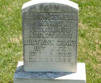 GRANT WARD, LUCY ANN - Lorain County, Ohio | LUCY ANN GRANT WARD - Ohio Gravestone Photos