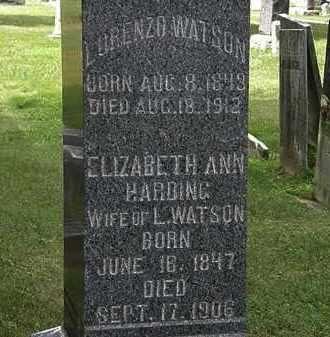 WATSON, ELIZABETH ANN - Lorain County, Ohio | ELIZABETH ANN WATSON - Ohio Gravestone Photos