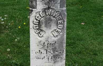 WEEDEN, GEORGE W. - Lorain County, Ohio | GEORGE W. WEEDEN - Ohio Gravestone Photos