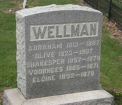 WELLMAN, OLIVE - Lorain County, Ohio | OLIVE WELLMAN - Ohio Gravestone Photos