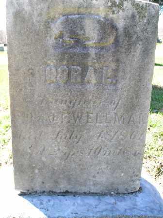 WELLMAN, CORA E - Lorain County, Ohio | CORA E WELLMAN - Ohio Gravestone Photos