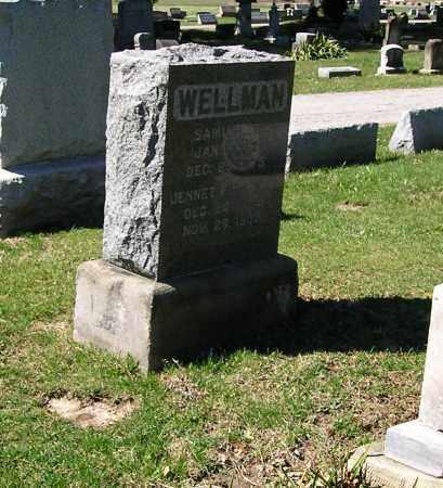 WELLMAN, SAMUEL OSGOOD - Lorain County, Ohio | SAMUEL OSGOOD WELLMAN - Ohio Gravestone Photos