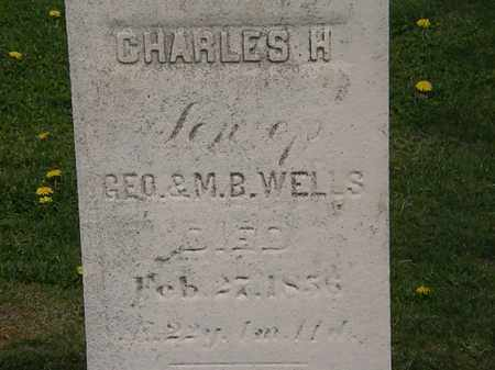 WELLS, GEO. - Lorain County, Ohio | GEO. WELLS - Ohio Gravestone Photos
