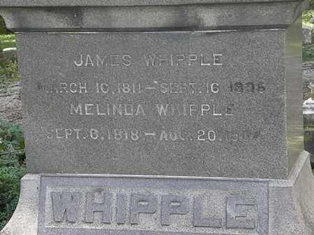 WHIPPLE, JAMES - Lorain County, Ohio | JAMES WHIPPLE - Ohio Gravestone Photos