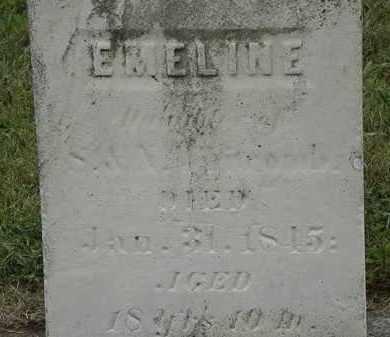 WHITCOMB, EMELINE - Lorain County, Ohio | EMELINE WHITCOMB - Ohio Gravestone Photos