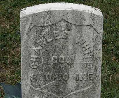 WHITE, CHARLES - Lorain County, Ohio   CHARLES WHITE - Ohio Gravestone Photos
