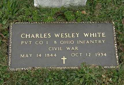 WHITE, CHARLES WESLEY - Lorain County, Ohio | CHARLES WESLEY WHITE - Ohio Gravestone Photos