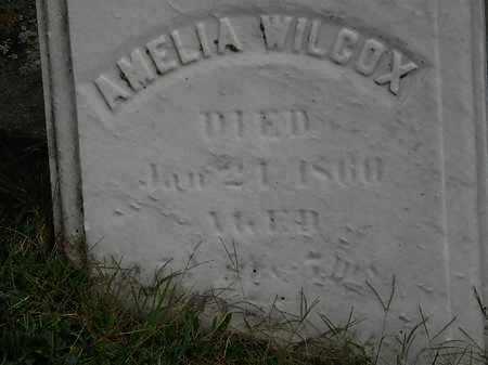 WILCOX, AMELIA - Lorain County, Ohio | AMELIA WILCOX - Ohio Gravestone Photos
