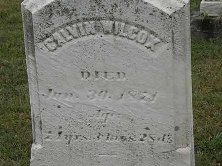 WILCOX, CALVIN - Lorain County, Ohio | CALVIN WILCOX - Ohio Gravestone Photos