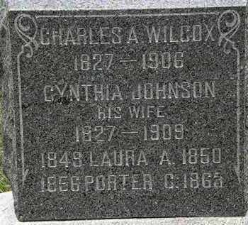 JOHNSON WILCOX, CYNTHIA - Lorain County, Ohio | CYNTHIA JOHNSON WILCOX - Ohio Gravestone Photos
