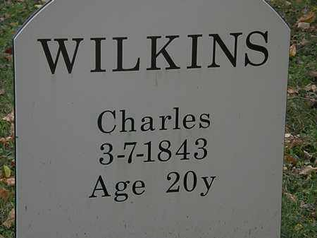 WILKINS, CHARLES - Lorain County, Ohio | CHARLES WILKINS - Ohio Gravestone Photos