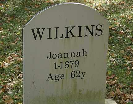 WILKINS, JOANNAH - Lorain County, Ohio | JOANNAH WILKINS - Ohio Gravestone Photos