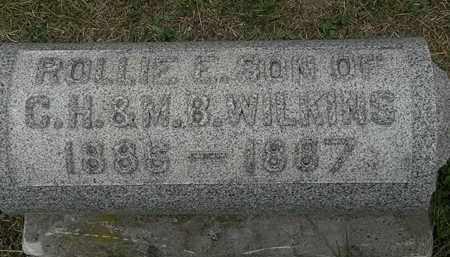 WILKINS, C.H. - Lorain County, Ohio | C.H. WILKINS - Ohio Gravestone Photos