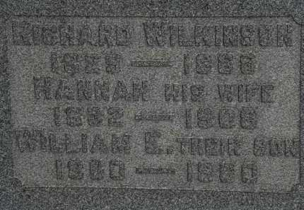 WILKINSON, RICHARD - Lorain County, Ohio | RICHARD WILKINSON - Ohio Gravestone Photos