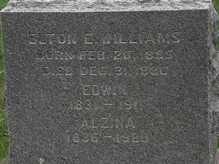 WILLIAMS, ALZINA - Lorain County, Ohio | ALZINA WILLIAMS - Ohio Gravestone Photos