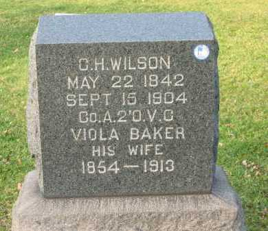 WILSON, VIOLA - Lorain County, Ohio | VIOLA WILSON - Ohio Gravestone Photos