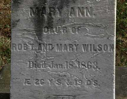WILSON, MARY ANN - Lorain County, Ohio | MARY ANN WILSON - Ohio Gravestone Photos