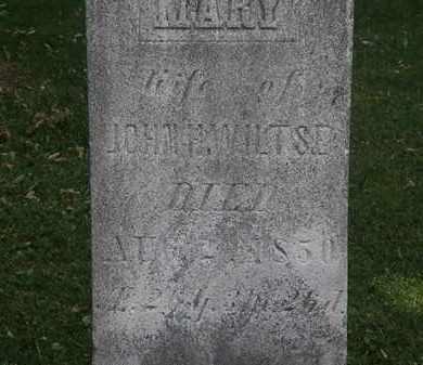 WILTSE, JOHN H. - Lorain County, Ohio | JOHN H. WILTSE - Ohio Gravestone Photos