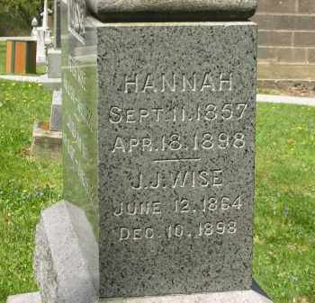 WISE, HANNAH - Lorain County, Ohio | HANNAH WISE - Ohio Gravestone Photos
