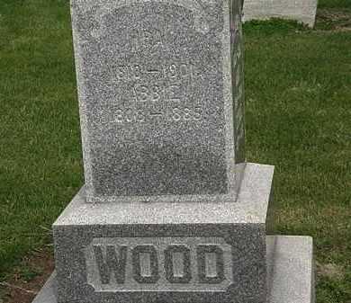 WOOD, IRA - Lorain County, Ohio | IRA WOOD - Ohio Gravestone Photos