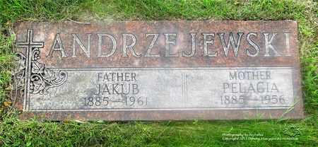 ANDRZEJEWSKI, PELAGIA - Lucas County, Ohio | PELAGIA ANDRZEJEWSKI - Ohio Gravestone Photos