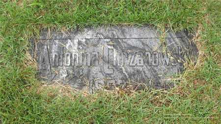 CHRZANOWSKI, ANTONINA - Lucas County, Ohio | ANTONINA CHRZANOWSKI - Ohio Gravestone Photos