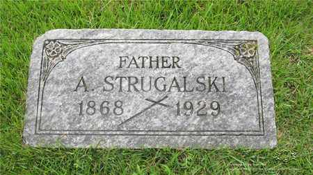 STRUGALSKI, APOLINARY - Lucas County, Ohio | APOLINARY STRUGALSKI - Ohio Gravestone Photos