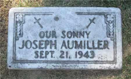 AUMILLER, JOSEPH - Lucas County, Ohio | JOSEPH AUMILLER - Ohio Gravestone Photos