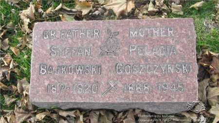 BAJKOWSKI, STEFAN - Lucas County, Ohio | STEFAN BAJKOWSKI - Ohio Gravestone Photos