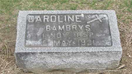 BAMBRYS, CAROLINE - Lucas County, Ohio | CAROLINE BAMBRYS - Ohio Gravestone Photos