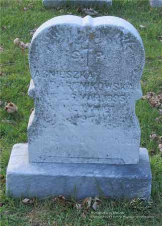 JASINSKI BARTNIKOWSKI, AGNIESZKA - Lucas County, Ohio | AGNIESZKA JASINSKI BARTNIKOWSKI - Ohio Gravestone Photos