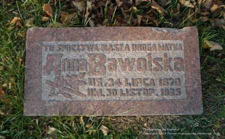 MICHALAK BAWOLSKA, ANNA - Lucas County, Ohio | ANNA MICHALAK BAWOLSKA - Ohio Gravestone Photos