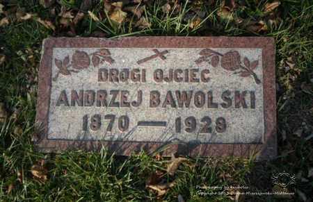 BAWOLSKI, ANDRZEJ - Lucas County, Ohio | ANDRZEJ BAWOLSKI - Ohio Gravestone Photos