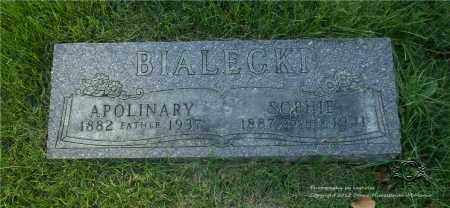 BIALECKI, APOLINARY - Lucas County, Ohio | APOLINARY BIALECKI - Ohio Gravestone Photos