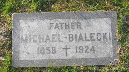 BIALECKI, MICHAEL - Lucas County, Ohio | MICHAEL BIALECKI - Ohio Gravestone Photos