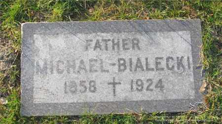 BIALECKI, MICHAEL - Lucas County, Ohio   MICHAEL BIALECKI - Ohio Gravestone Photos