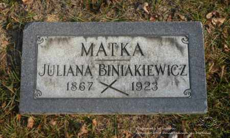 MICHALSKI BINIAKIEWICZ, JULIANA - Lucas County, Ohio | JULIANA MICHALSKI BINIAKIEWICZ - Ohio Gravestone Photos