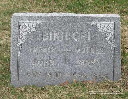 BINIECKI, MARY - Lucas County, Ohio | MARY BINIECKI - Ohio Gravestone Photos