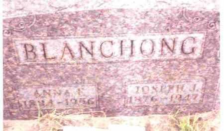 BLANCHONG, ANNA M. - Lucas County, Ohio | ANNA M. BLANCHONG - Ohio Gravestone Photos